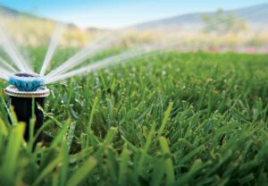 Sprinkler Systems At Home Tests